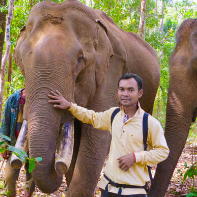 Chantorn Thear - Elephant Expert - Cambodian Pride Tours
