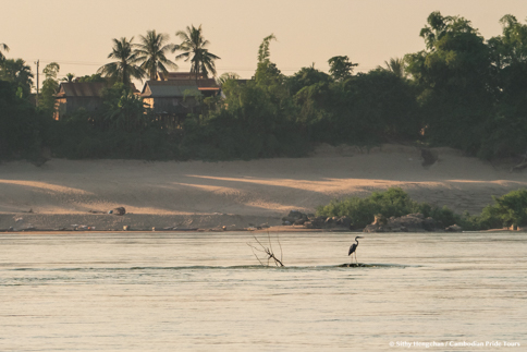 Egret standing on rock in the Mekong river behind people house