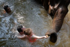 Father and daughter feeding elephant the banana in the water