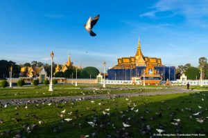 Pigeons flying in front of Royal Palace Phnom Penh