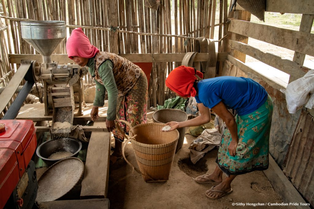 Ethnic hill tribe women cleaning rice
