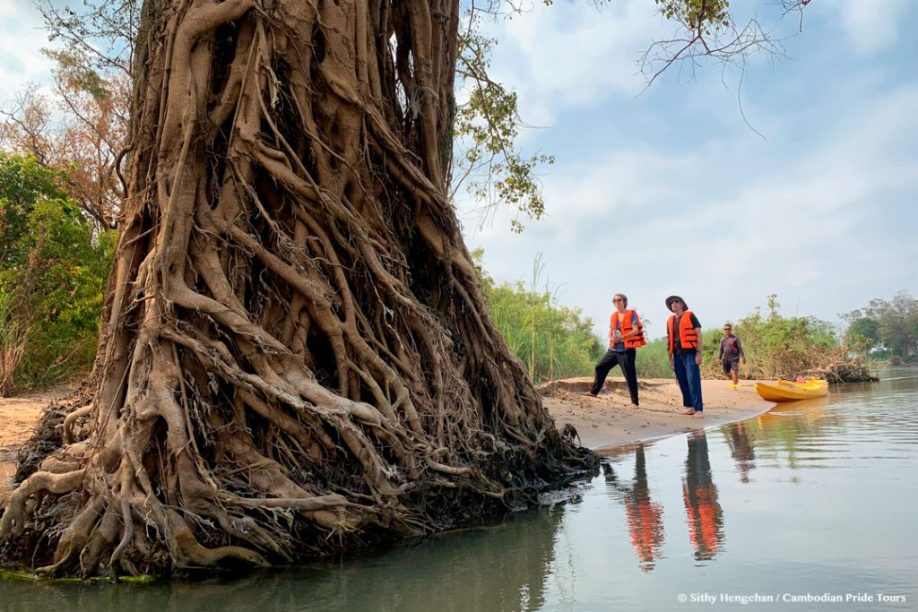 Exploring beautiful tree roots in the Mekong flooded forests