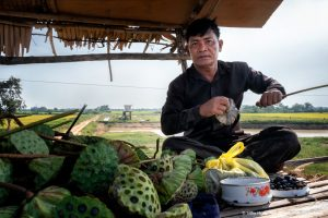A man with his lotus fruit
